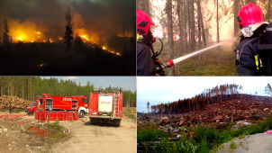 Pożar idzie w ich stronę. Polscy strażacy gotowi, będą bronili miasta