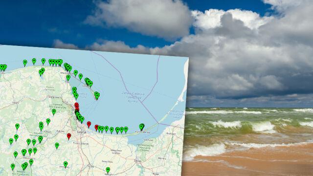 Sinice w Bałtyku. Coraz więcej czerwonych flag na kąpieliskach