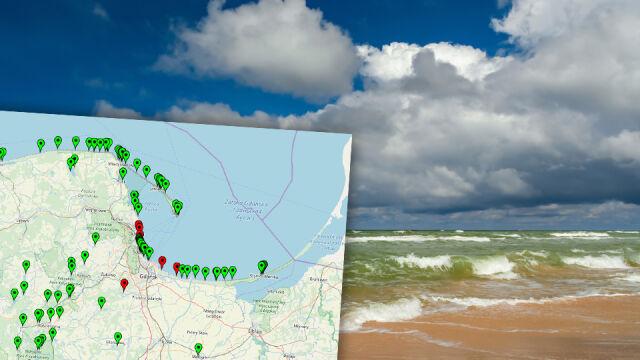 Sinice w Bałtyku. Czerwone flagi na plażach