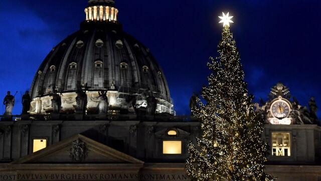 Zapłonęły światła na choince w Watykanie. Papież o