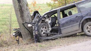 Uderzenie w drzewo.  Nie żyje 7-miesięczna dziewczynka