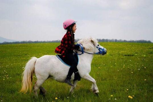 Dziewczynka zaczynała swoją przygodę z jeździectwem od kucyka