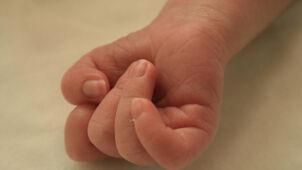 Ciało noworodka w pojemniku ogrodowym. Matka usłyszała zarzut zabójstwa