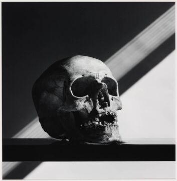 Skull, 1988