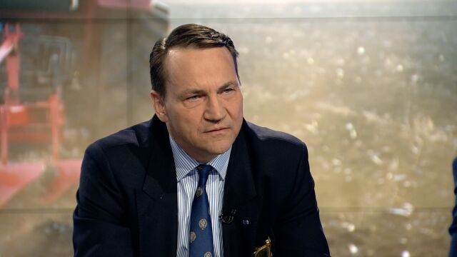 Radek Sikorski: the United States are a key partner of the European Union (video from 30 May, 2018)