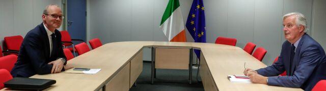 Szef MSZ Irlandii: zobaczyliście dzisiaj frustrację Donalda Tuska