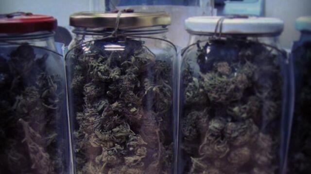 Piekł ciasteczka z marihuaną, kiedy do jego drzwi zapukała policja