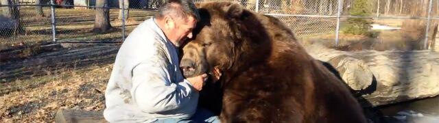 Gigantyczna przyjaźń. Niedźwiedź pokochał swojego opiekuna