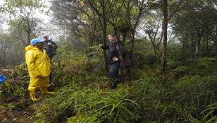 Kupujemy tropikalny las w Kolumbii. Polska zdobywa trzecią bazę