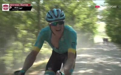 Strade Bianche 2020: Fuglsang wściekły na motocyklistę