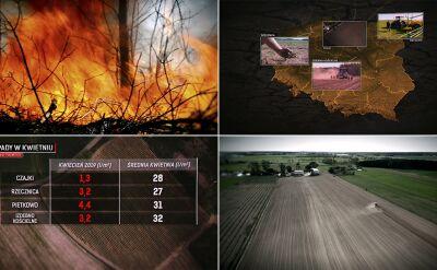 Zmiana klimatu w Polsce. Do czego doprowadziły wiosenne zawirowania pogodowe?