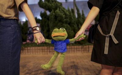 Łańcuch z ludzi i żab w Hongkongu