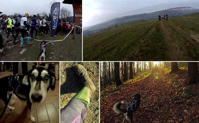 Łemkowyna Ultra Trail 70 km
