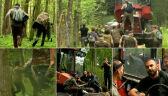 Ekolodzy blokują wycinkę drzew w Puszczy Białowieskiej