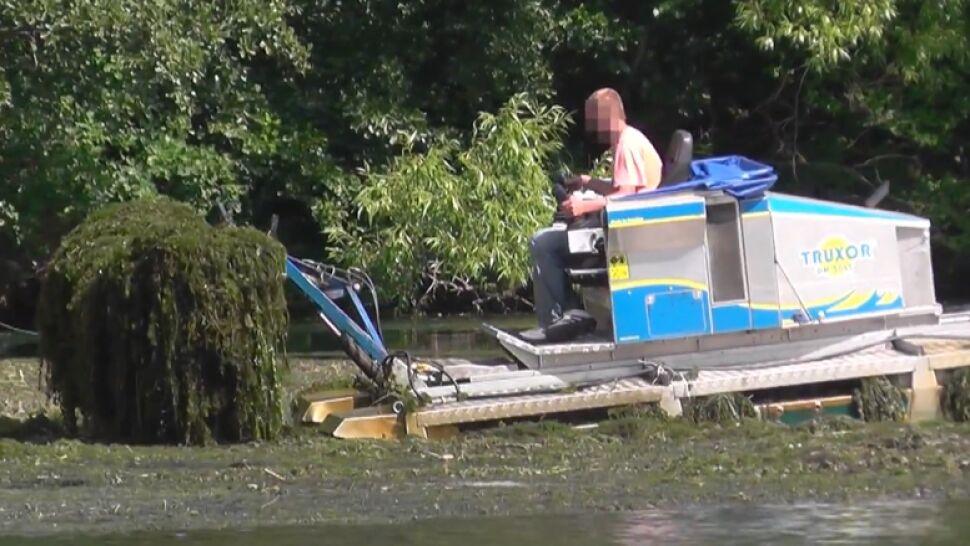"""Amfibia jak kosiarka. Tak elektrownia """"sprząta"""" jezioro w Juszkowie"""