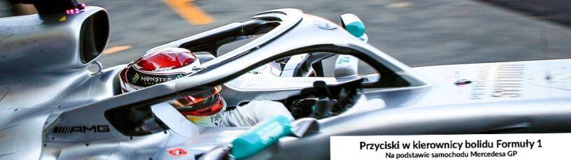 Pracy więcej niż u pilota myśliwca. Zwycięstwo w F1 zależy od masy przycisków