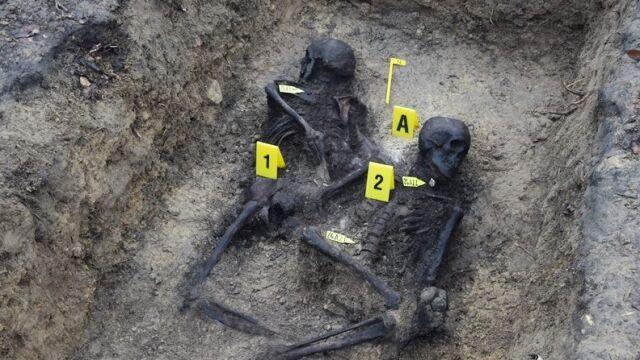 Szczątki ofiar egzekucji w leśnej mogile