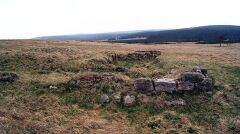 Pozostałości po zabudowaniach wsi na Hali Izerskiej