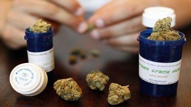 Projekt o leczniczej marihuanie: pacjent będzie mógł sam uprawiać konopie
