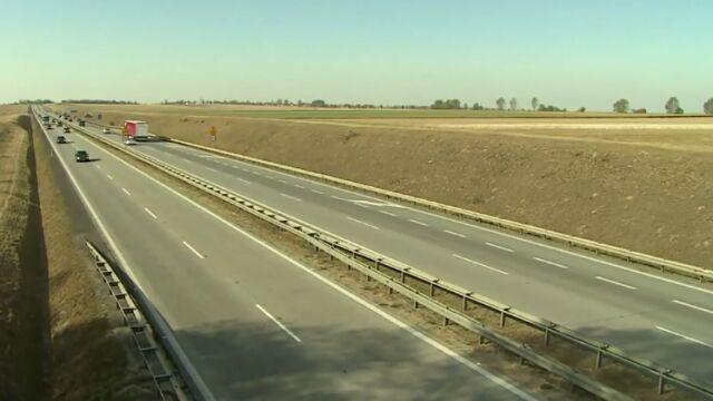 Zderzenie z naturą. Czy polskie drogi są źle zabezpieczone?
