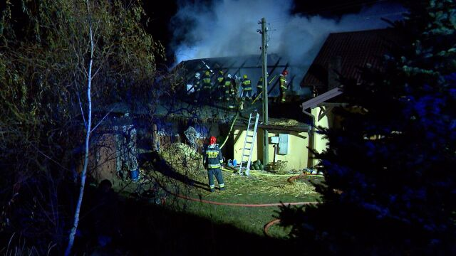 Tragiczny pożar w stadninie niedaleko Warszawy
