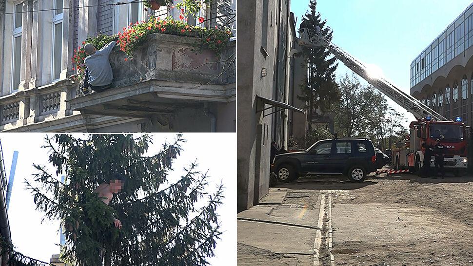 Stał w oknie, jego kolega skoczył na drzewo. Byli poszukiwani przez policję