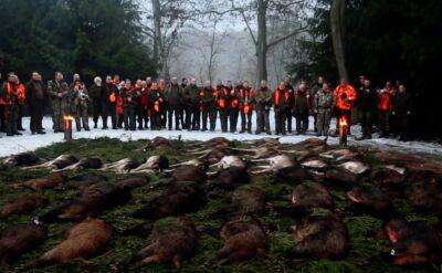Polowania dewizowe. Co roku 25 tysięcy myśliwych z zagranicy poluje w Polsce