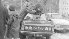 Samochód z bagażnikiem dachowym okazywał się nieoceniony, kiedy trzeba było przetransportować choinkę