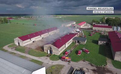 Pożar owczarni koło Kościana