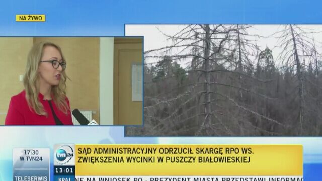 Większe cięcia w Puszczy Białowieskiej. Sąd odrzucił skargę Rzecznika Praw Obywatelskich