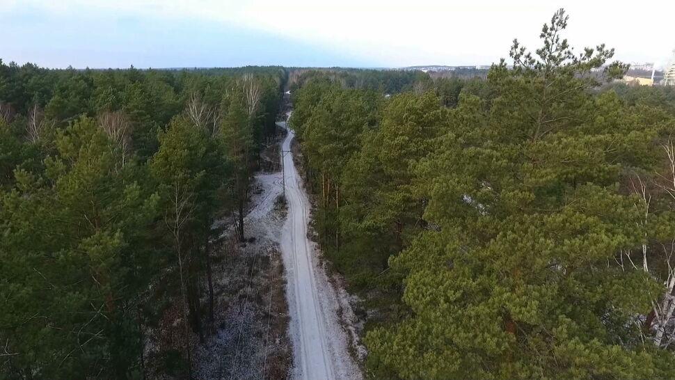 Nowy cmentarz w miejscu starego lasu? Mieszkańcy protestują
