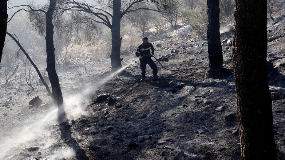 Greccy strażacy walczą z ogniem. Zagrożenie wciąż nie minęło