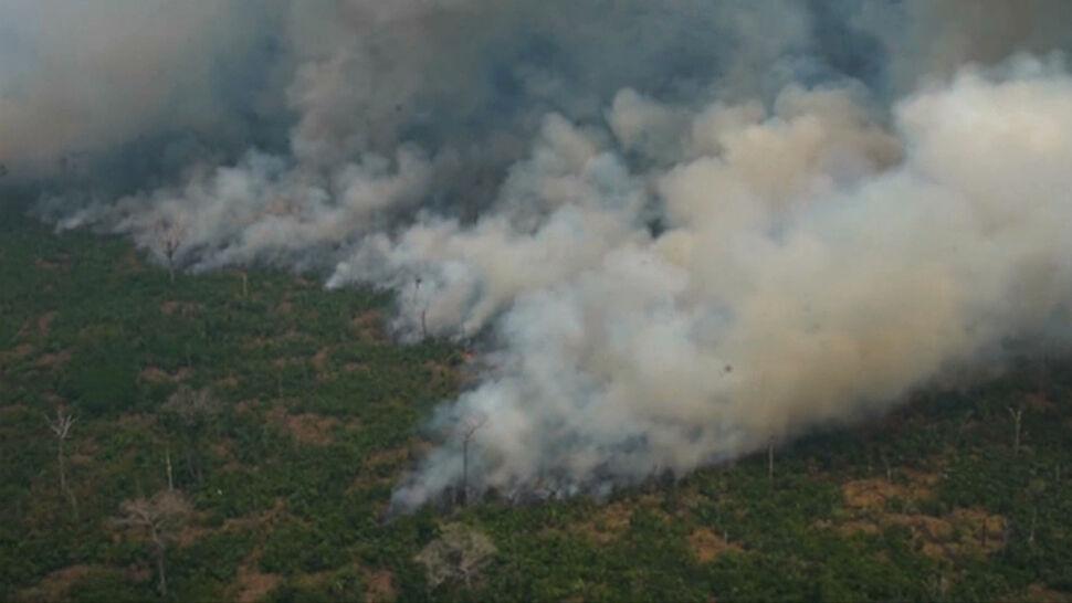 Leonardo DiCaprio winny pożarów w Amazonii? Tak twierdzi prezydent Brazylii