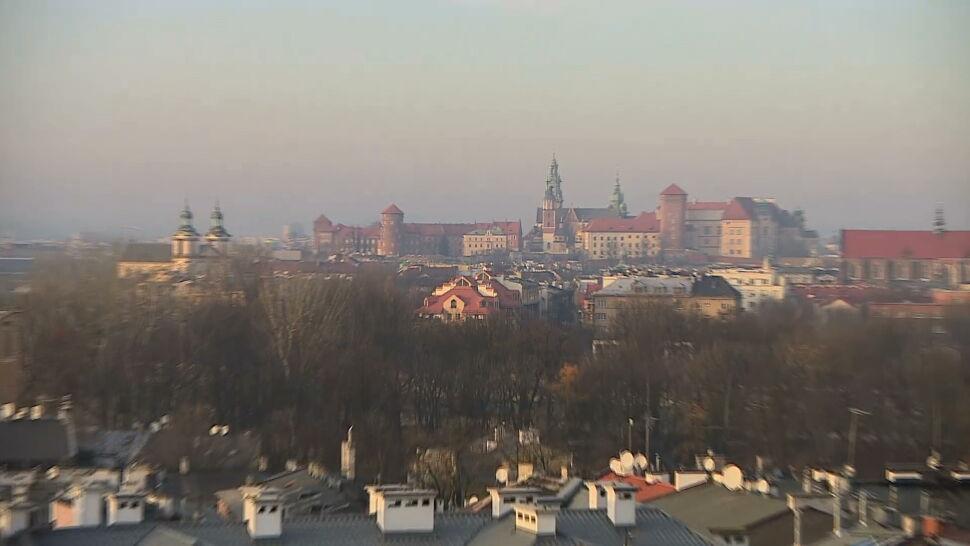 Góra Kraków dusi się smogiem. Miasto rozdaje rośliny doniczkowe AL45