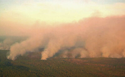 Cztery miliony hektarów lasu płoną, 800 syberyjskich miejscowości zasnuł dym. Ekolodzy: to katastrofa