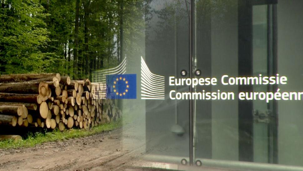 Sprawa Puszczy Białowieskiej trafia do Trybunału Sprawiedliwości UE