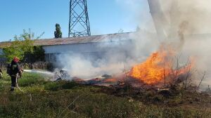 Pożar przy Łodygowej. Trzy zastępy straży gasiły altankę