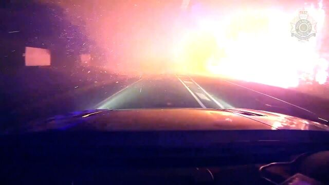 Nagranie z płonącego buszu.