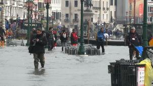 W Wenecji zalanych zostało 90 procent sklepów. Premier obiecał pomoc finansową