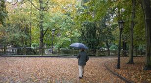 Prognoza pogody na dziś: 22 stopnie, lokalnie deszcz, miejscami silniejszy wiatr