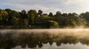 Prognoza pogody na dziś: poranną mgłę zastąpi słońce