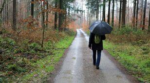 Pogoda na dziś: dzień pod znakiem deszczu, do 9 stopni