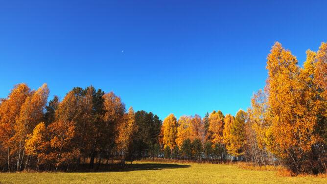 Jesienią niebo jest bardziej niebieskie. Dlaczego?