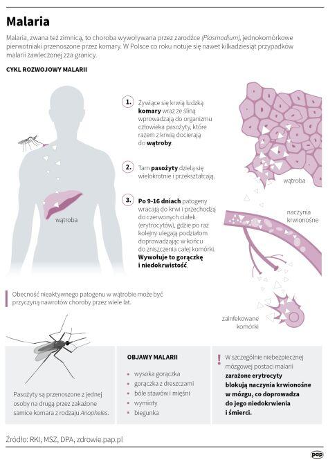 Malaria (Małgorzata Latos/PAP/DPA)