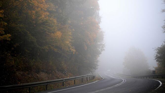 Mgły w Polsce. Widzialność może być znacznie ograniczona